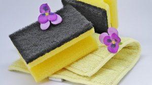 Reinigungsprodukte von Pastaclean im Einsatz